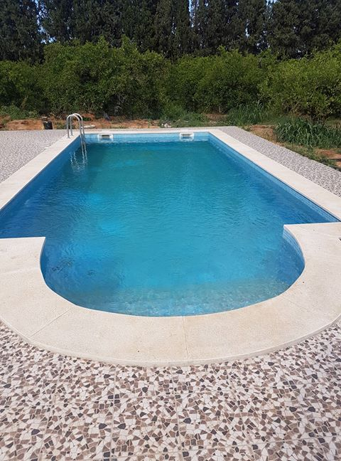 How to identify and remove algae in swimming pool